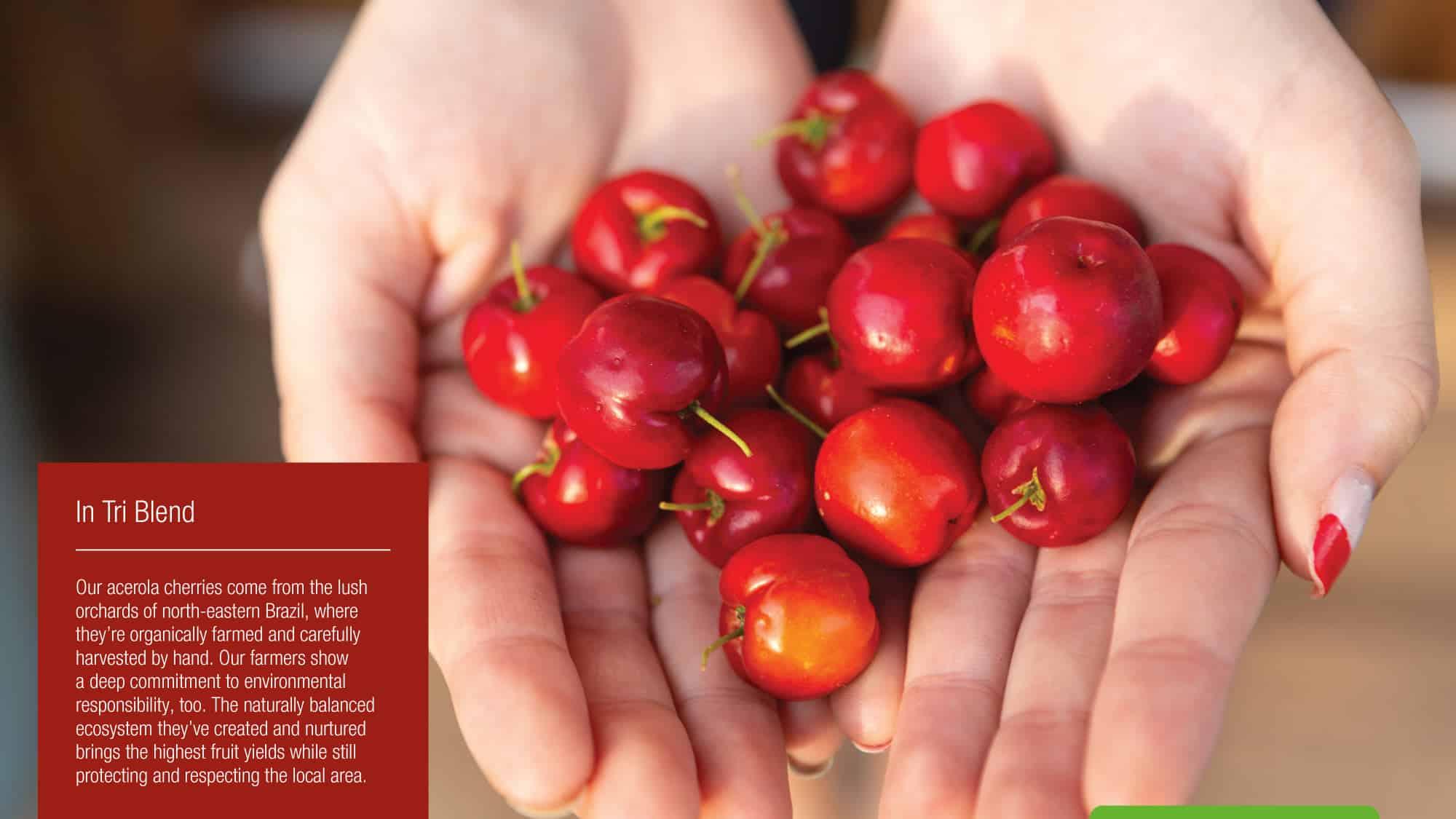acerola-cherries-vegan-shake